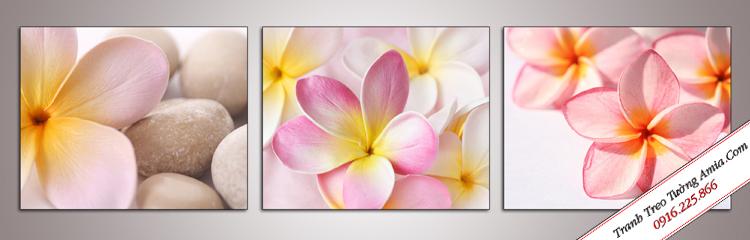 tranh hoa dai treo spa voi nhung canh hoa mong manh