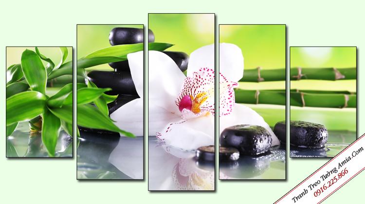 tranh treo tuong spa bong hoa lan trang