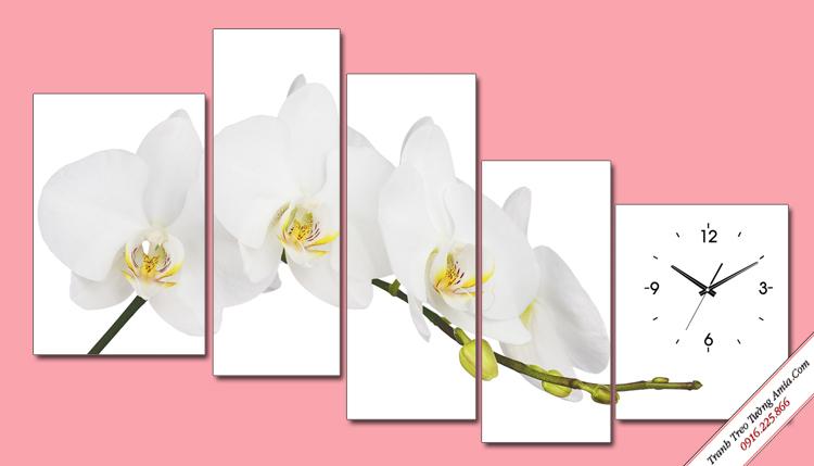 tranh treo tuong nhanh hoa lan trang ghep bo