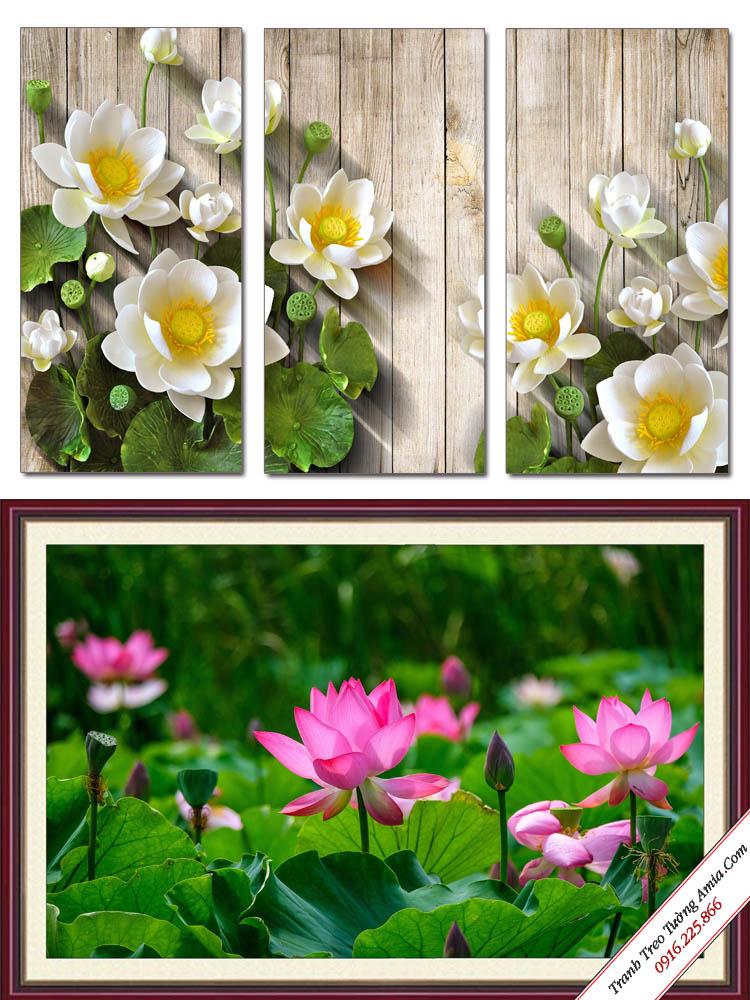 tranh treo tuong dep hoa sen