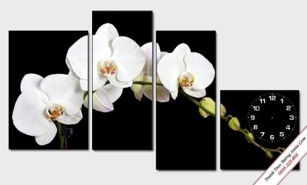 tranh treo tuong dep nhanh hoa lan trang