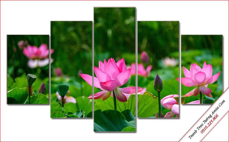 tranh hoa sen treo phong khach dep