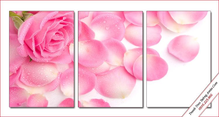 tranh bong hoa hong treo phong ngu
