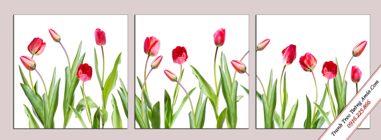 tranh hoa tulip treo tuong danh cho cau thang