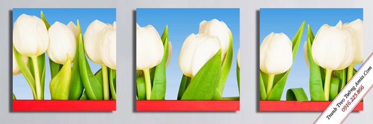 tranh treo tuong hoa tulip trang danh cho cau thang