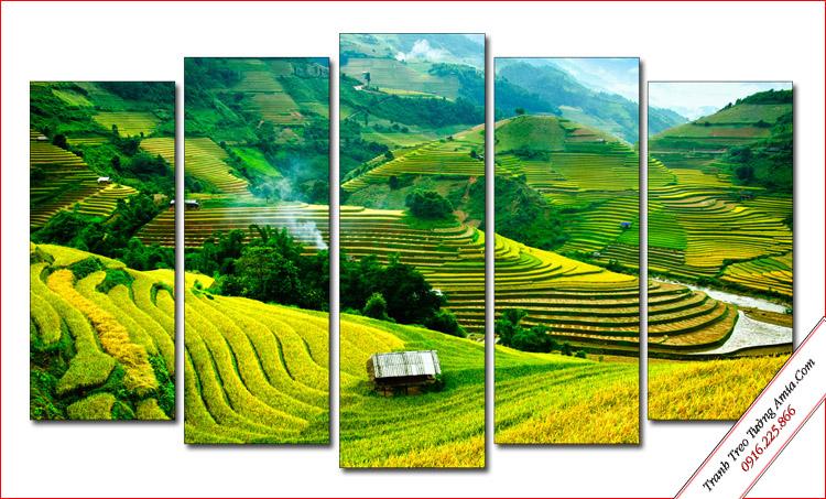 tranh ruong bac thang phong canh dep hop menh Hoa