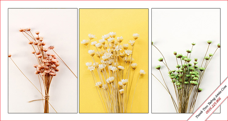 bo tranh hoa dai 3 mau treo tuong phong tam