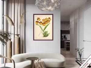 khung tranh trang tri phong khach hoa lan vang nghe thuat