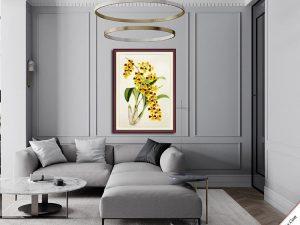 khung tranh treo phong khach hoa lan vang nghe thuat