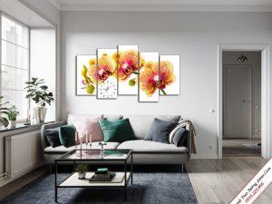 tranh hoa phong lan ho diep treo tuong phong khach dep